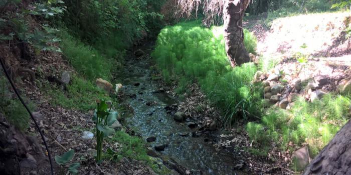 Περιβαλλοντική εκπαίδευση στο δημοτικό σχολείο