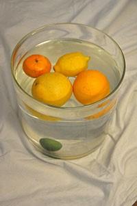 πειραμα με φρούτα